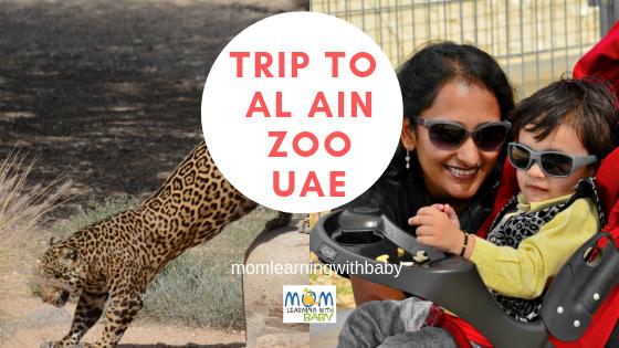 Why You Must take Kids to Al Ain Zoo UAE